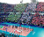 World League 2015 - Foro Italico